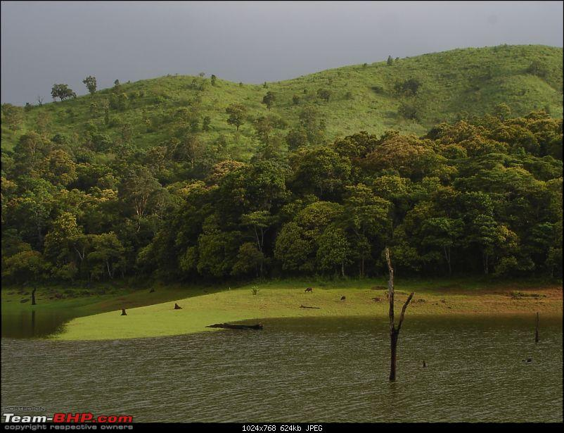 Bangalore � Munnar /Thekkady /Kochi in Swift D..-dsc08822.jpg