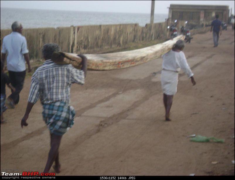 Photoblog of destinations in & around Trivandrum, Kerala-dsc04224.jpg