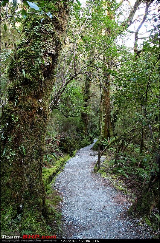 Down Under: Trip to Australia and a 2000 km road-trip within New Zealand's South Island-img_1961.jpg