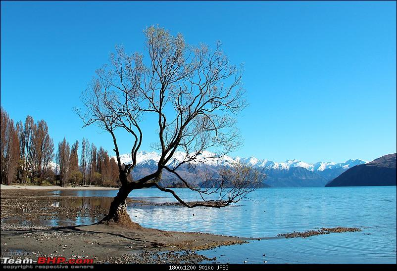 Down Under: Trip to Australia and a 2000 km road-trip within New Zealand's South Island-img_0113.jpg
