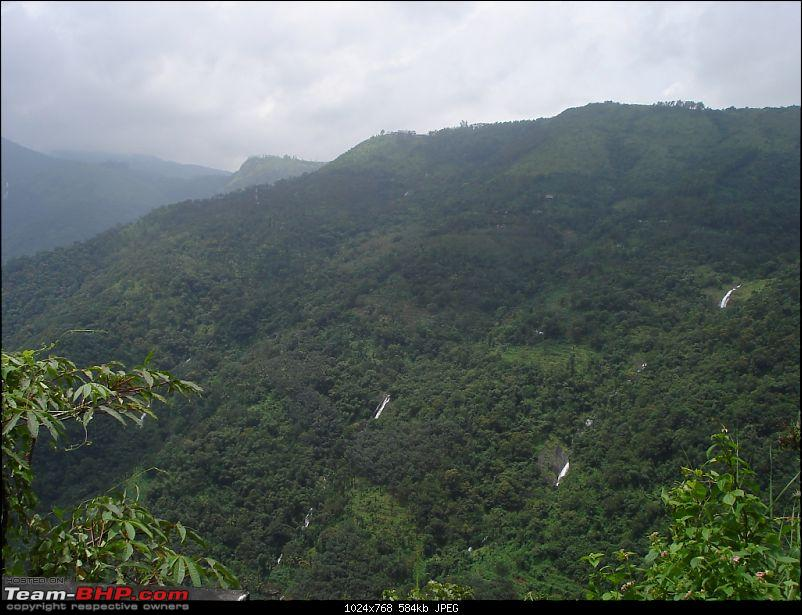 Bangalore – Munnar /Thekkady /Kochi in Swift D..-dsc08901.jpg