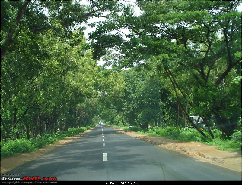 Bangalore – Munnar /Thekkady /Kochi in Swift D..-dsc08929.jpg