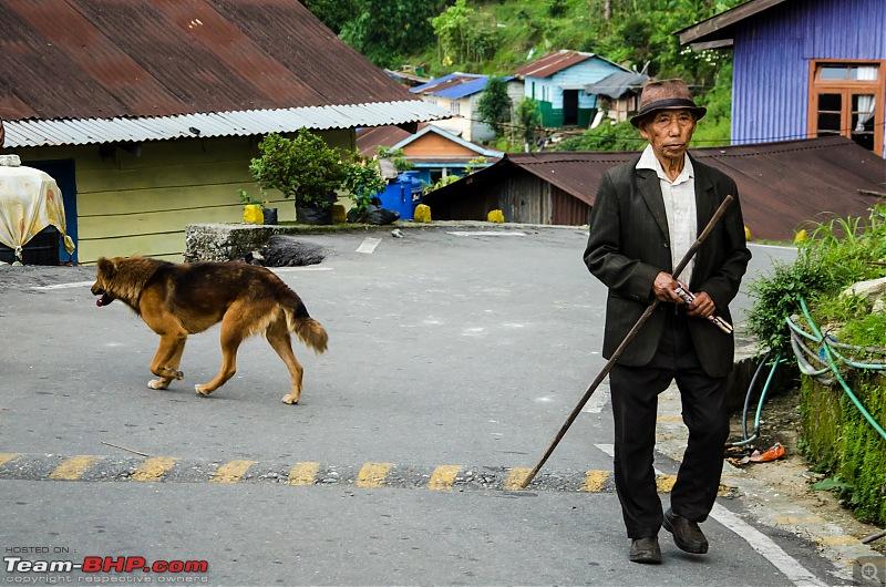 The Journey is the Destination - Zuluk, Kupup, Gnathang & Latpanchar-tkd_9343.jpg