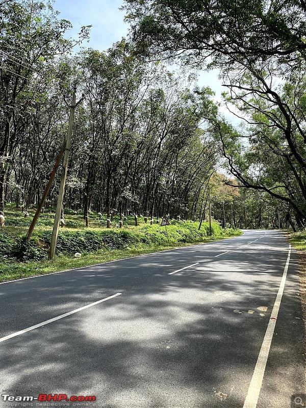 Bangalore - Varkala - Alleppey in a Honda City-nh-44-12.jpg