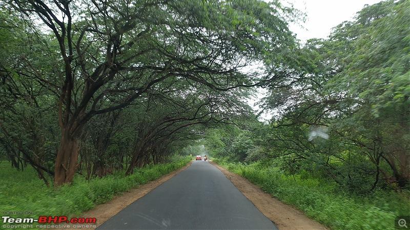 Bangalore - Munnar - Varkala - Alleppey in our Thar-20191225_114800.jpg