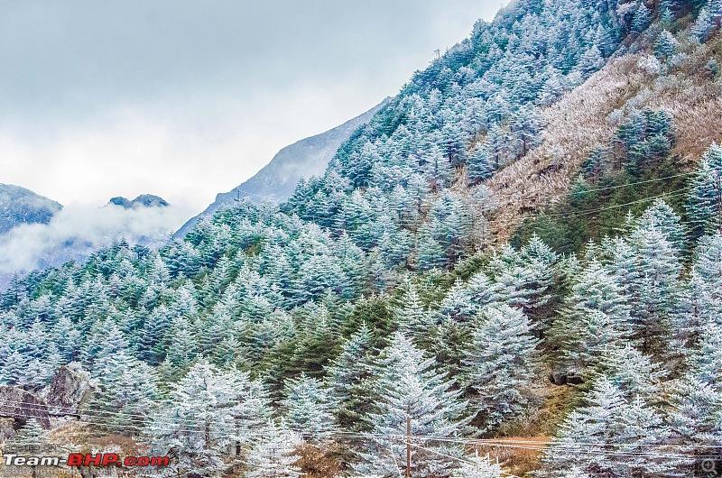 Western Arunachal : A 9-day road trip!-_dsc9116.jpg