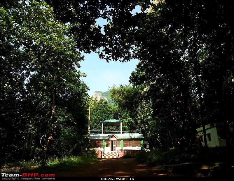 A giant squirrel & the tree house - Forests of Odisha-65bf7ca0a40d4bc2ac873585a49c0a26.jpeg
