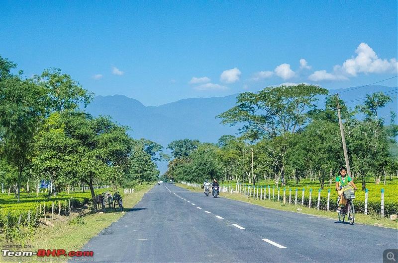 Western Arunachal : A 9-day road trip!-_dsc8924.jpg