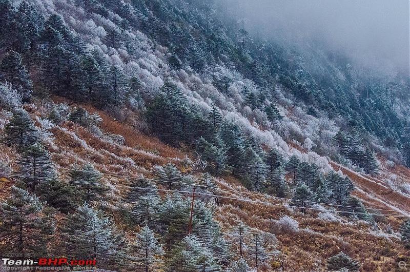 Western Arunachal : A 9-day road trip!-_dsc9111.jpg