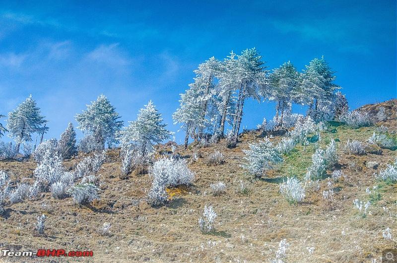 Western Arunachal : A 9-day road trip!-_dsc9171.jpg
