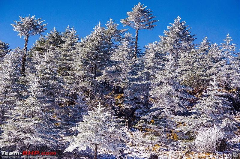 Western Arunachal : A 9-day road trip!-_dsc9178.jpg
