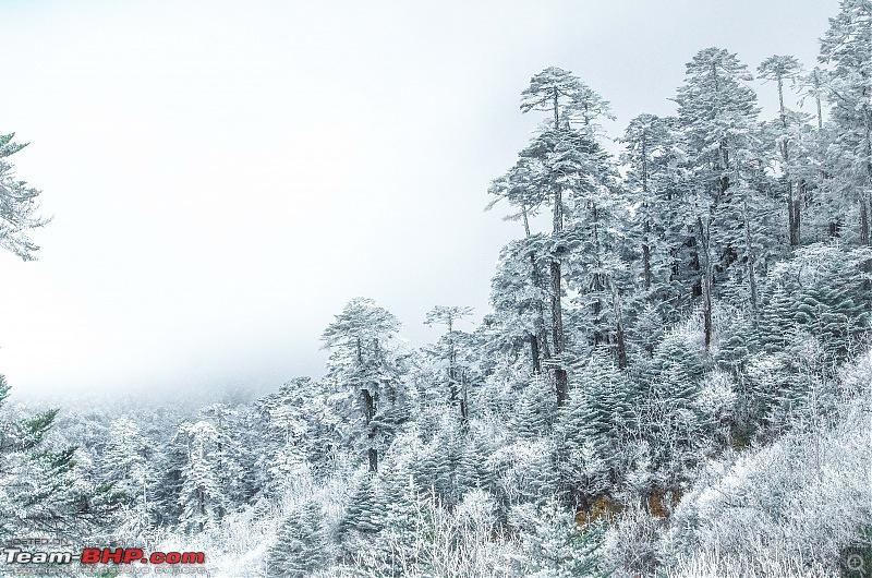 Western Arunachal : A 9-day road trip!-_dsc9291.jpg