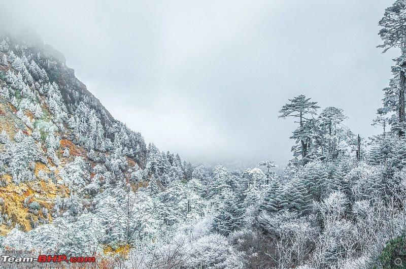 Western Arunachal : A 9-day road trip!-_dsc9293.jpg