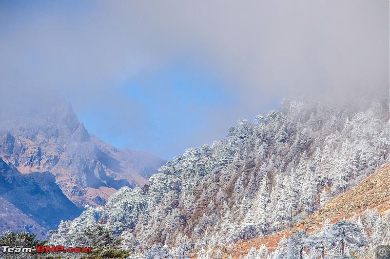 Western Arunachal : A 9-day road trip!-_dsc9316.jpg