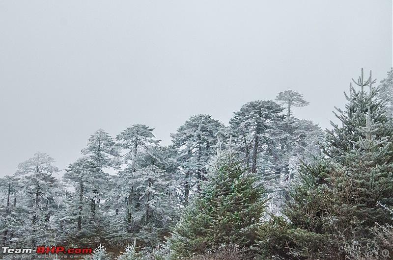 Western Arunachal : A 9-day road trip!-_dsc9375.jpg