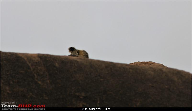 A Nature's Trail in Hampi-img_4786.jpg