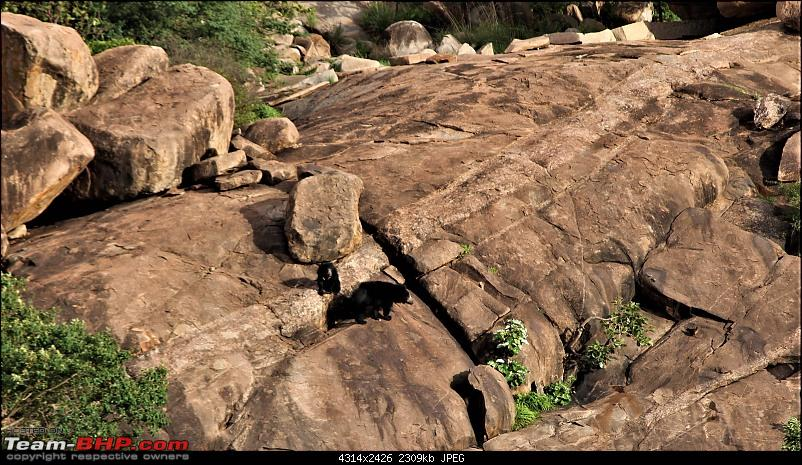 A Nature's Trail in Hampi-img_4932.jpg