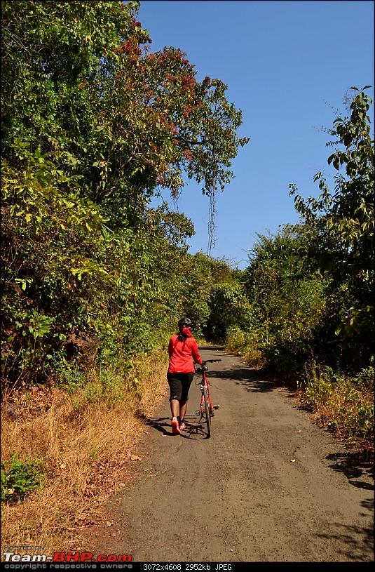 A 250 km bicycle ride along the Konkan Coast-csc_1115.jpg
