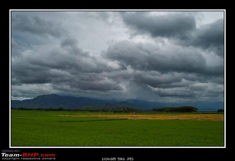Travelogue : Scaling Vagamon and its heights-4-large.jpg