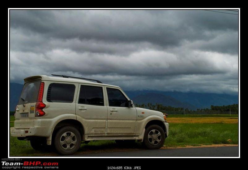 Travelogue : Scaling Vagamon and its heights-6-large.jpg