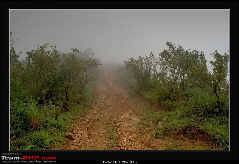 Travelogue : Scaling Vagamon and its heights-8-large.jpg