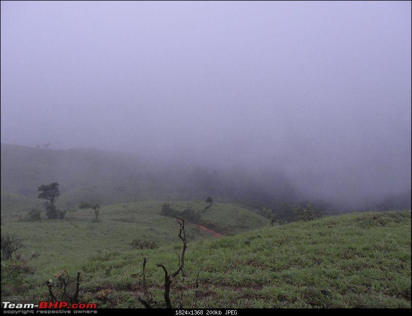 Unplanned weekend trips to Sringeri-Agumbe & Kaginahare-dsc00614.jpg