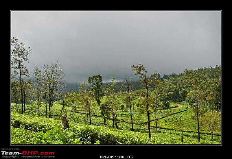 Travelogue : Scaling Vagamon and its heights-9-large.jpg