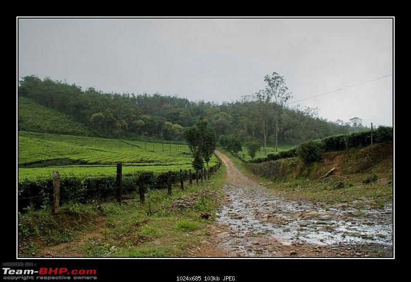 Travelogue : Scaling Vagamon and its heights-10-large.jpg