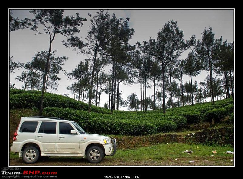 Travelogue : Scaling Vagamon and its heights-13-large.jpg