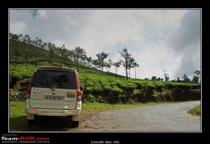 Travelogue : Scaling Vagamon and its heights-14-large.jpg