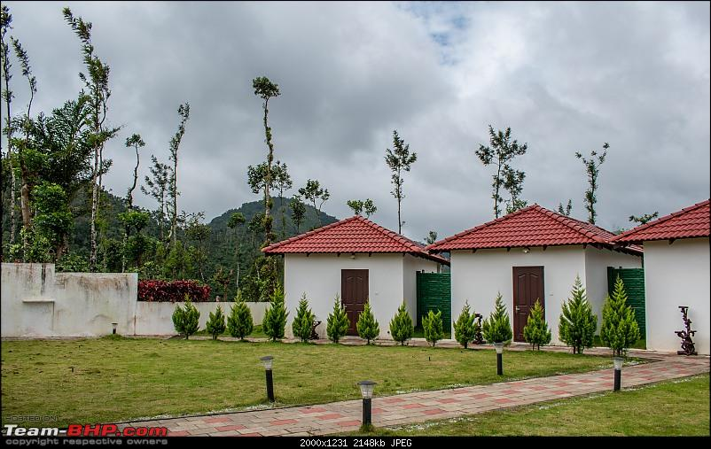 Chikmagalur: Driving through Coffee Country, with the windows down-dsc_0588.jpg