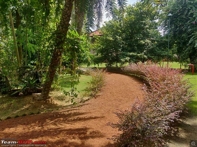 Drive to Scenic Massanjore & Serene Shantiniketan-img20201003wa0032.jpg