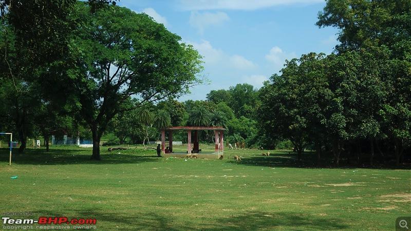 Drive to Scenic Massanjore & Serene Shantiniketan-kopai-fields.jpg
