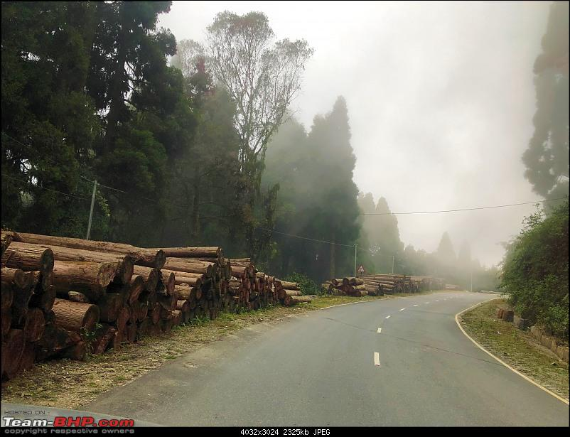 Autumn Drive in an Innova Crysta to Dooars, Kolakham, Kalimpong & Darjeeling-14.-way-logs.jpg