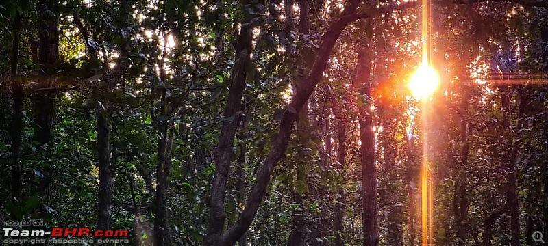 Forests, hills & more! Our road-trip to Madhya Pradesh from Kolkata-fb_img_1605952233954.jpg