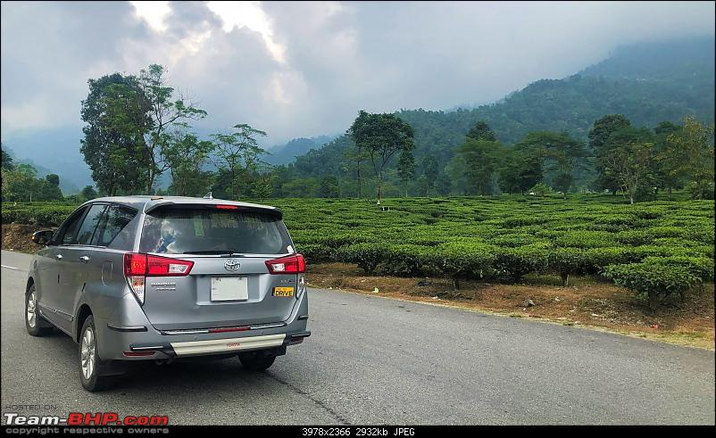 Autumn Drive in an Innova Crysta to Dooars, Kolakham, Kalimpong & Darjeeling-08.b-crysta-tea.jpg