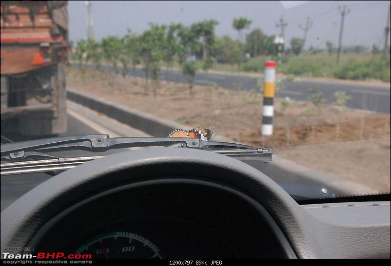 YetiBlog� -  The Yeti�, Normally_Crazy and The Tata Nano drive to Delhi!-dsc_3161_l.jpg