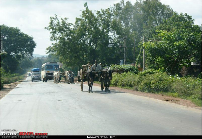 An incredible road trip to Velankanni, Kodaikanal and Ooty-traffic-jam-caused-bullock-carts.jpg