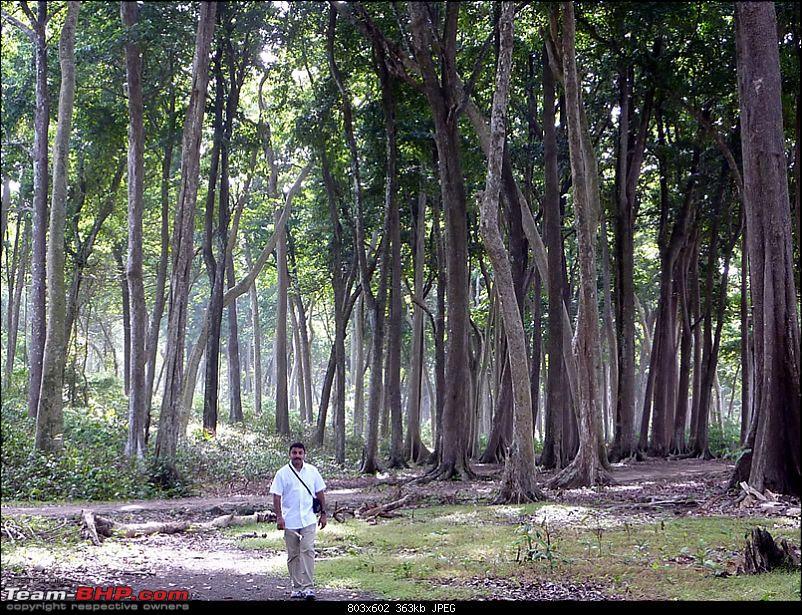'Xing'ing around ! - Andaman & Nicobar and Tamilnadu.-004.jpg