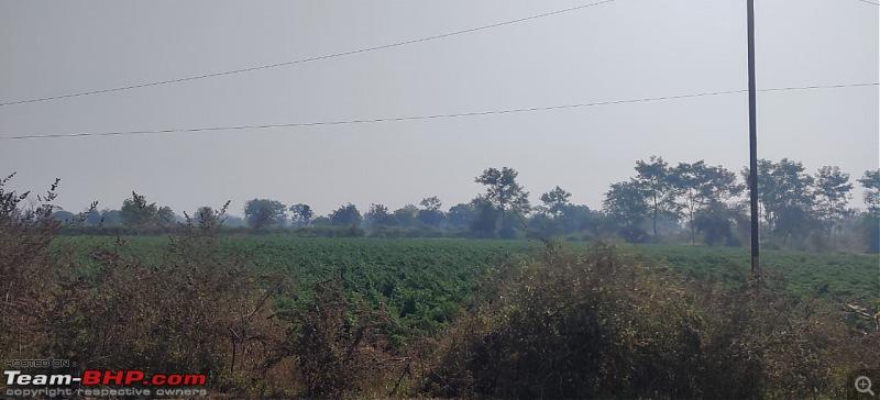 A 3700 km road-trip into the jungles, hills and villages of magnificent Madhya Pradesh-nagpur-bandara-fields.jpg