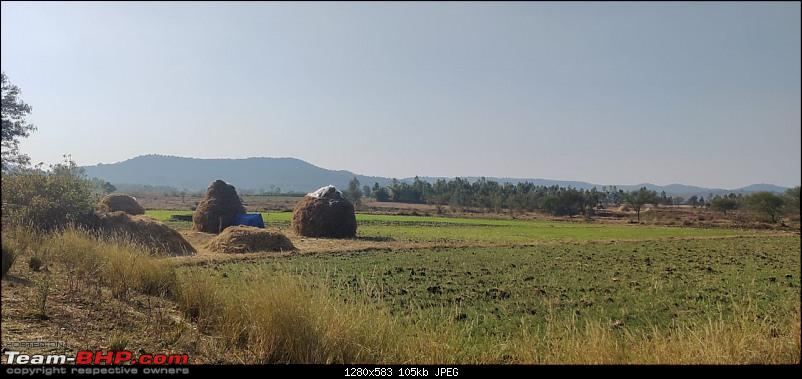 A 3700 km road-trip into the jungles, hills and villages of magnificent Madhya Pradesh-hay-stacks-again.jpg