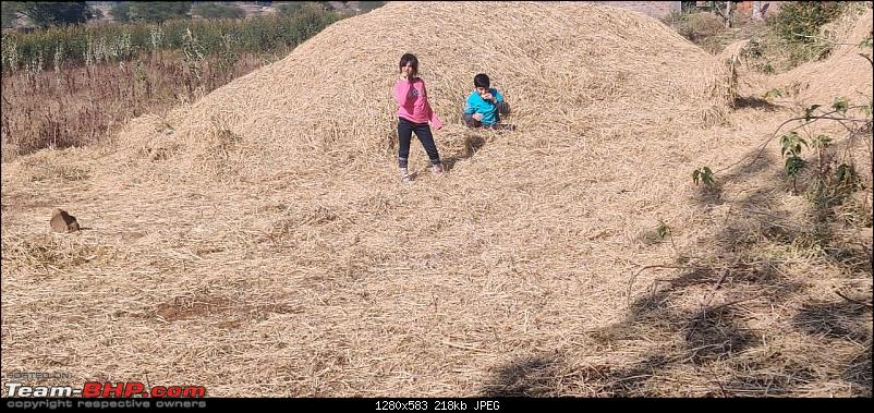 A 3700 km road-trip into the jungles, hills and villages of magnificent Madhya Pradesh-kids-venturing-into-field-haystacks.jpg