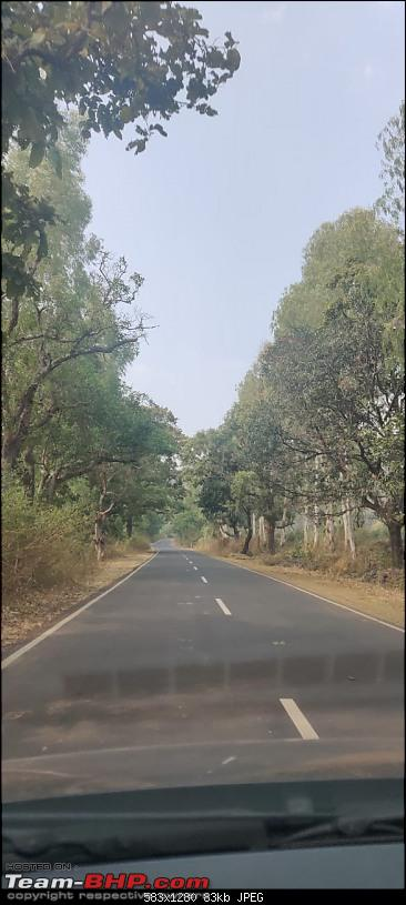 A 3700 km road-trip into the jungles, hills and villages of magnificent Madhya Pradesh-en-route-bandhavgarh.jpg