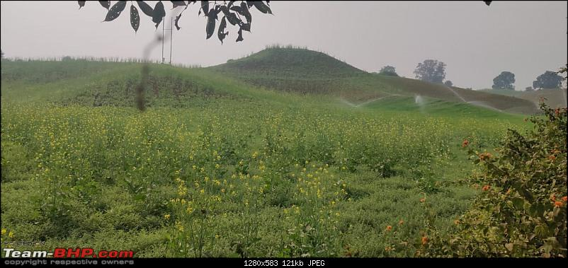 A 3700 km road-trip into the jungles, hills and villages of magnificent Madhya Pradesh-familiar-scenes-3.jpg