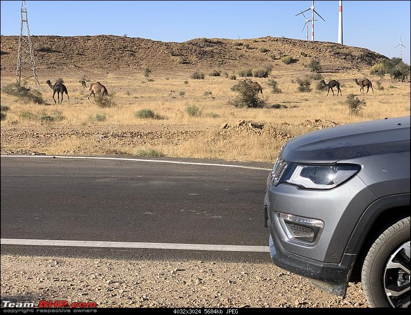 2000 km Rajasthan road-trip in a brand new Jeep Compass-img_2740.jpg