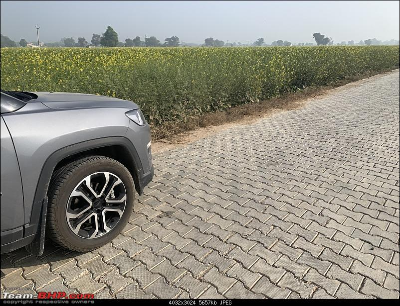 2000 km Rajasthan road-trip in a brand new Jeep Compass-img_2818.jpg