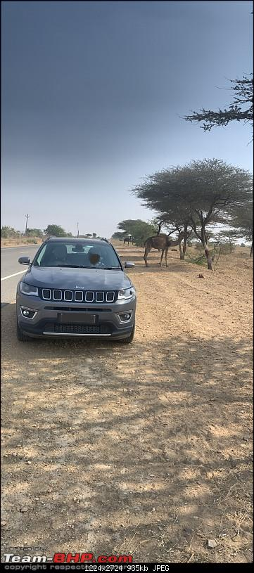 2000 km Rajasthan road-trip in a brand new Jeep Compass-img_4925.jpg