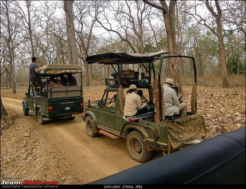 Cars, Wildlife and Photography Lessons at Kabini-img_20210328_1744492.jpg