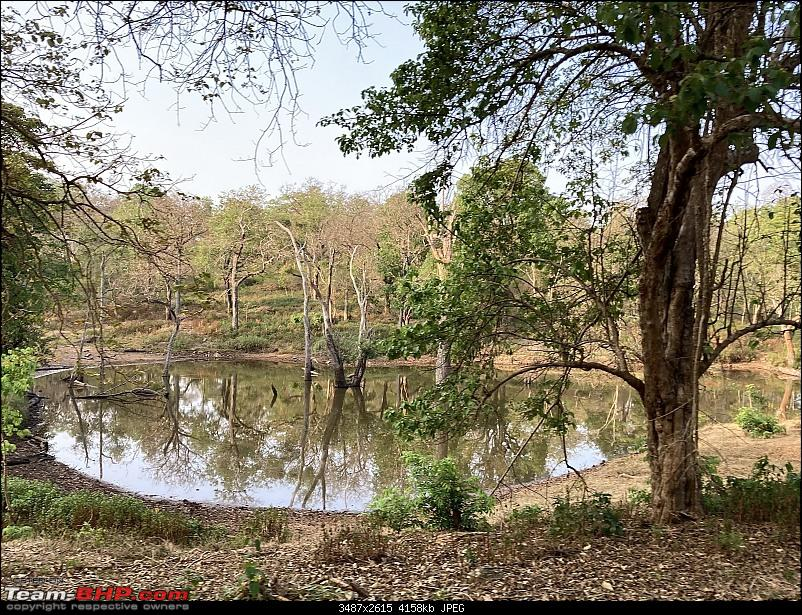 Cars, Wildlife and Photography Lessons at Kabini-img_0776.jpg