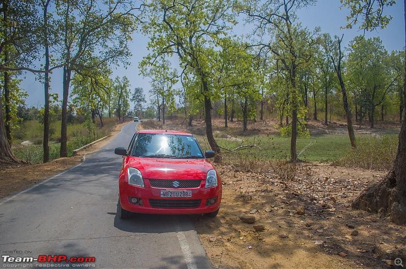 Road Trip to the Indian Savanna-_dsc1639.jpg